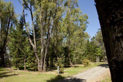 Hyères nature – Plages – camping écologique et écoresponsable