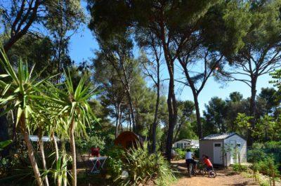 Louer cabane en bois - camping Var