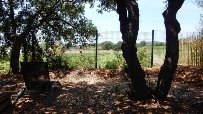Camping dans la verdure face aux vignobles - Var