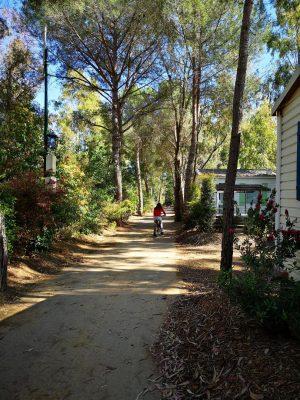 Camping Bormes-les-Mimosas Mobile-homes Famille Convivial Bon plan