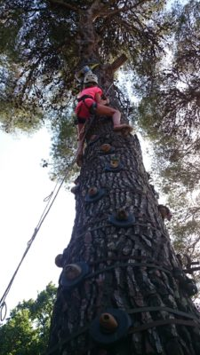 Escal'arbre au camping - animations enfants