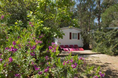 La verdure et l'espace autour des mobile-homes du camping