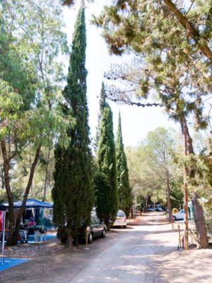 Les emplacements caravanes en camping écologique Var