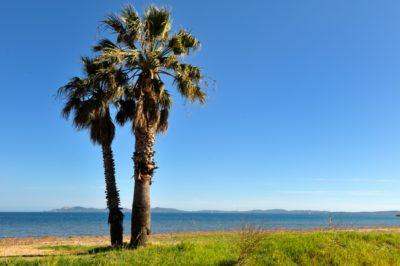 Camping proche des plages d'Hyères)
