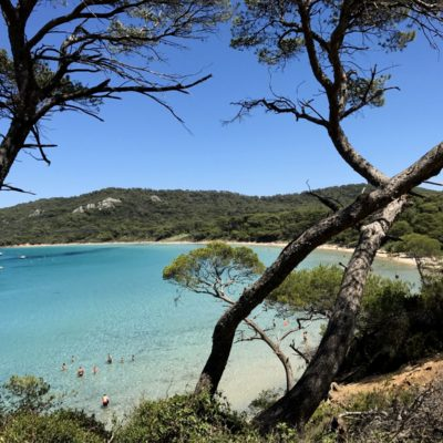 Camping Var île de Porquerolles - Hyères