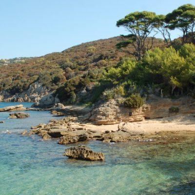 Camping Var proche de l'île du Levant - Hyères