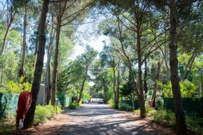Camping nature slowlife sur la Côte d'Azur