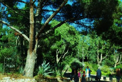 Vacances en camping ombragé et nature
