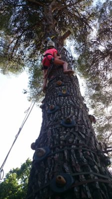 Escal'arbre au camping - animations 8/12 ans