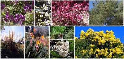 Ecocamping dans le Var en Provence - Vacances écologiques au calme