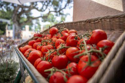 Minimarket fruits légumes camping