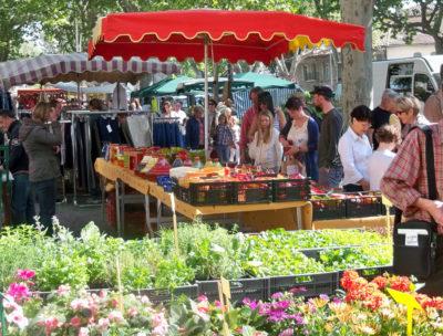 Var, camping vacances et marché