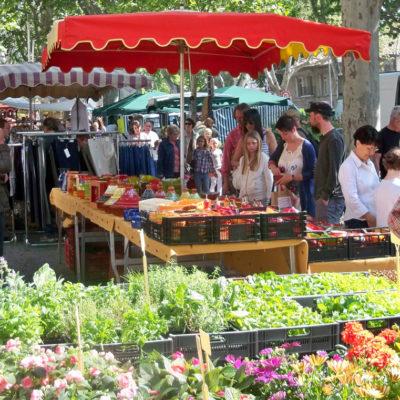 Découvrir les marchés de Provence en camping