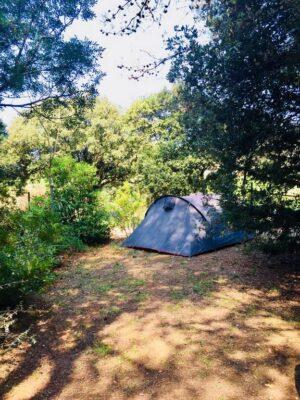 Emplacement small confort pour tente ou petite caravane
