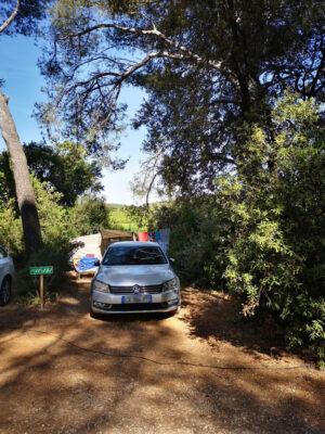 La nature est au programme de vos vacances en camping !